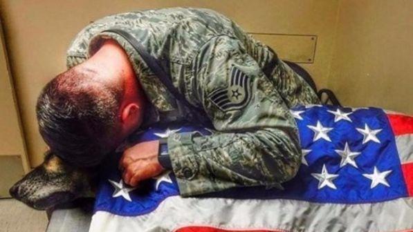 Cane e soldato, compagni inseparabili dalle missioni all'ultimo saluto