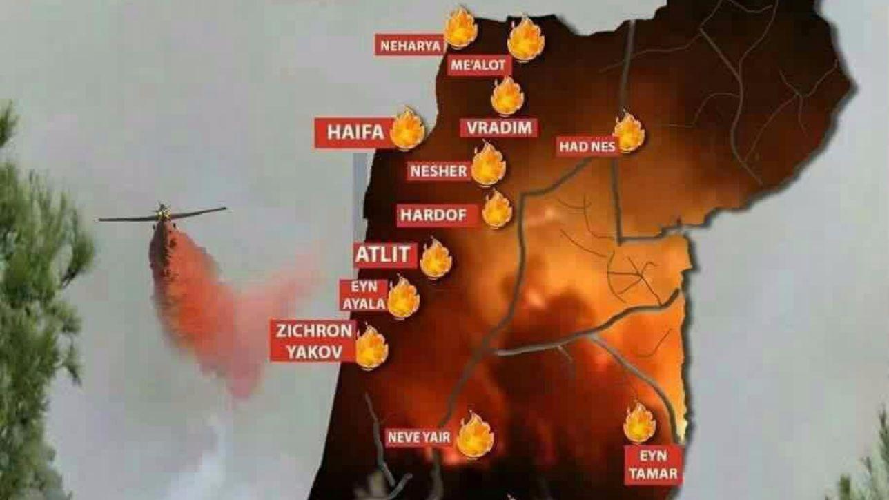 Incendi ad Haifa, rientrano a casa gli 80mila sfollati | Su Twitter spopola #IsraeleBrucia, l'ombra dell'Isis