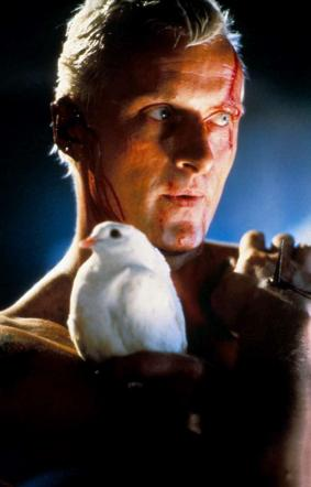 """""""Blade Runner"""", il futuro è qui: oggi sarebbe nato il replicante Roy Batty"""