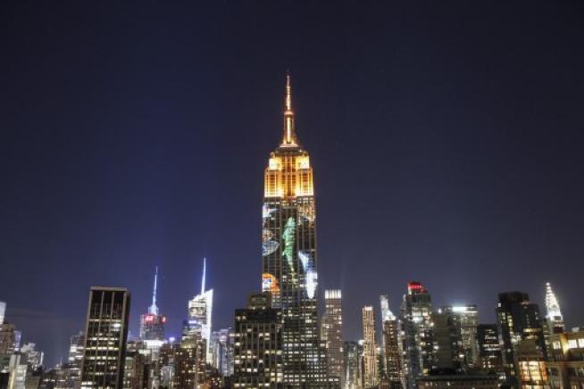 L'Empire State Building si accende per gli animali in via d'estinzione: 33 piani di luci