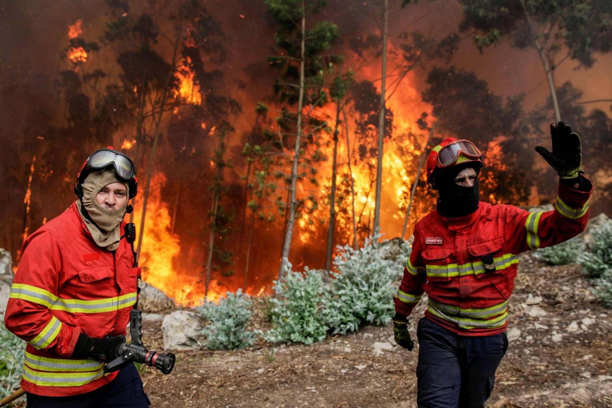 Portogallo, maxi incendio nei boschi: diverse vittime