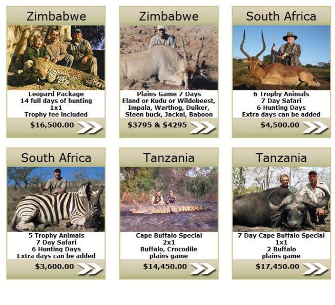 Il leone Cecil è solo la punta dell'icebergIn Africa il tariffario per ricchi cacciatori