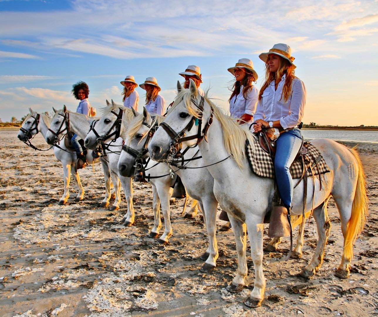 In Camargue, tra fenicotteri e cavalli