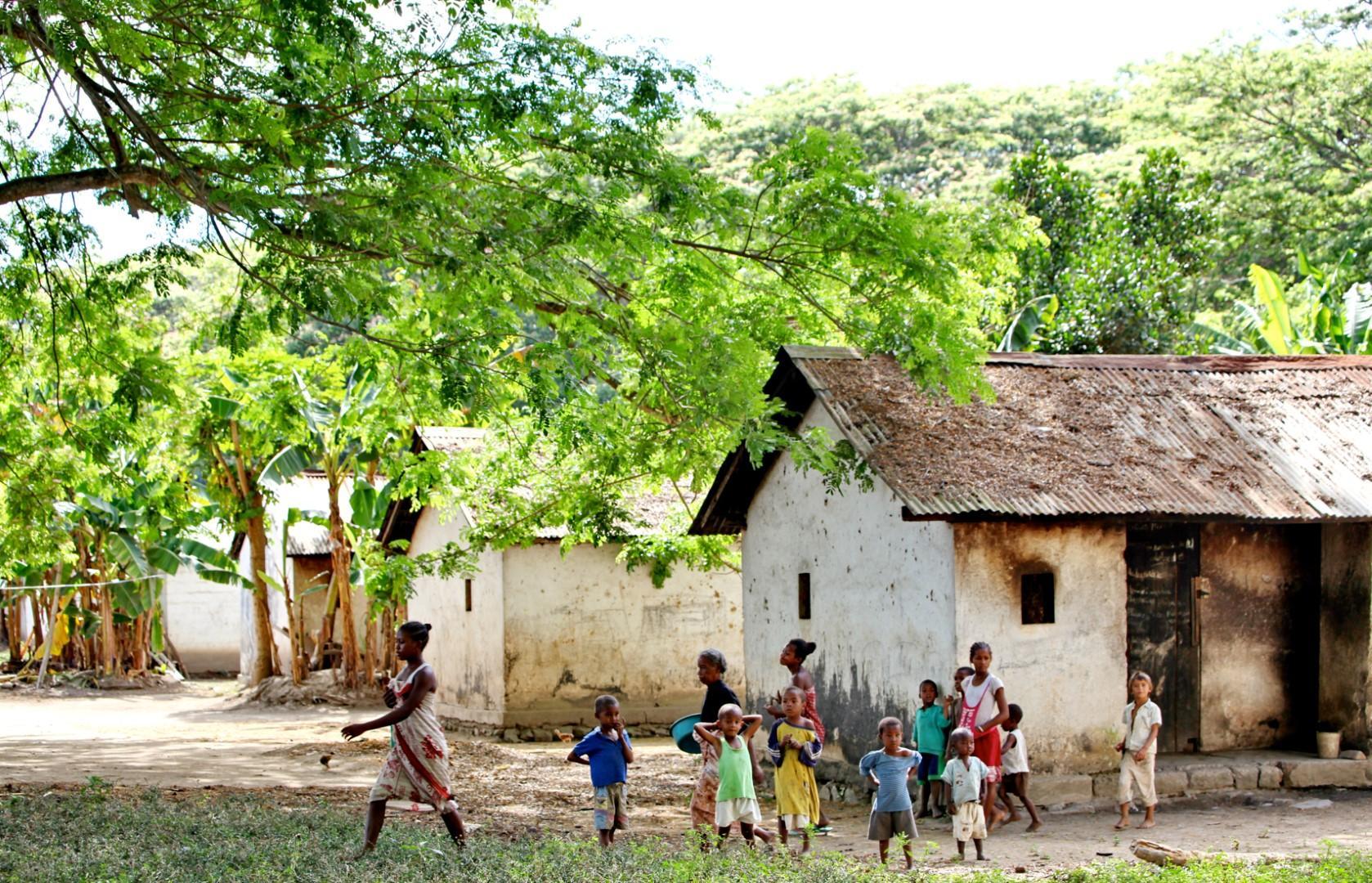 Il Madagascar e le sue piantagioni di cacao
