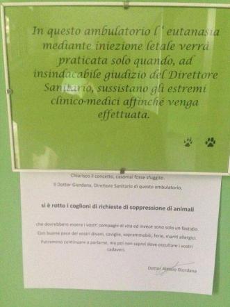 """Boom richieste di eutanasia, il veterinario: """"Avete rotto, animali non sono un fastidio"""""""