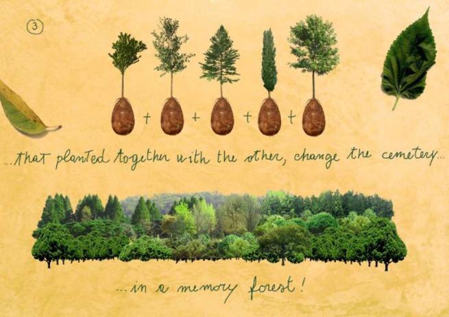 Capsula Mundi, l'eco-sepoltura che trasforma le bare dei defunti in alberi