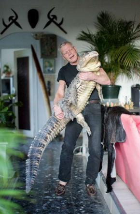 Francia, divide la casa con 600 animali: in soggiorno tiene anche due alligatori
