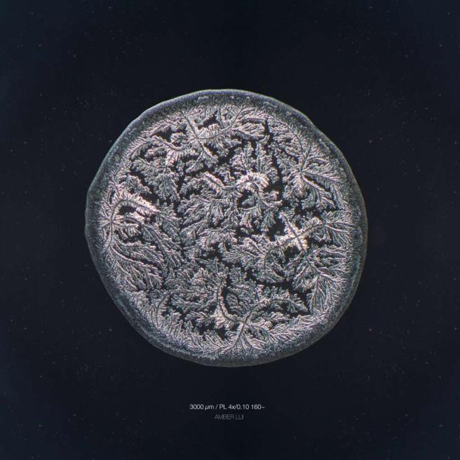 La bellezza delle lacrime al microscopio: cambiano forma col nostro stato d'animo