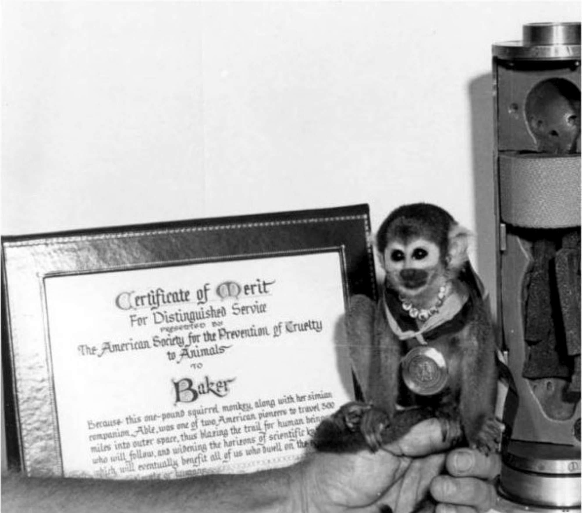 Scimmie nello Spazio, i viaggi dei primi pionieri del cosmo