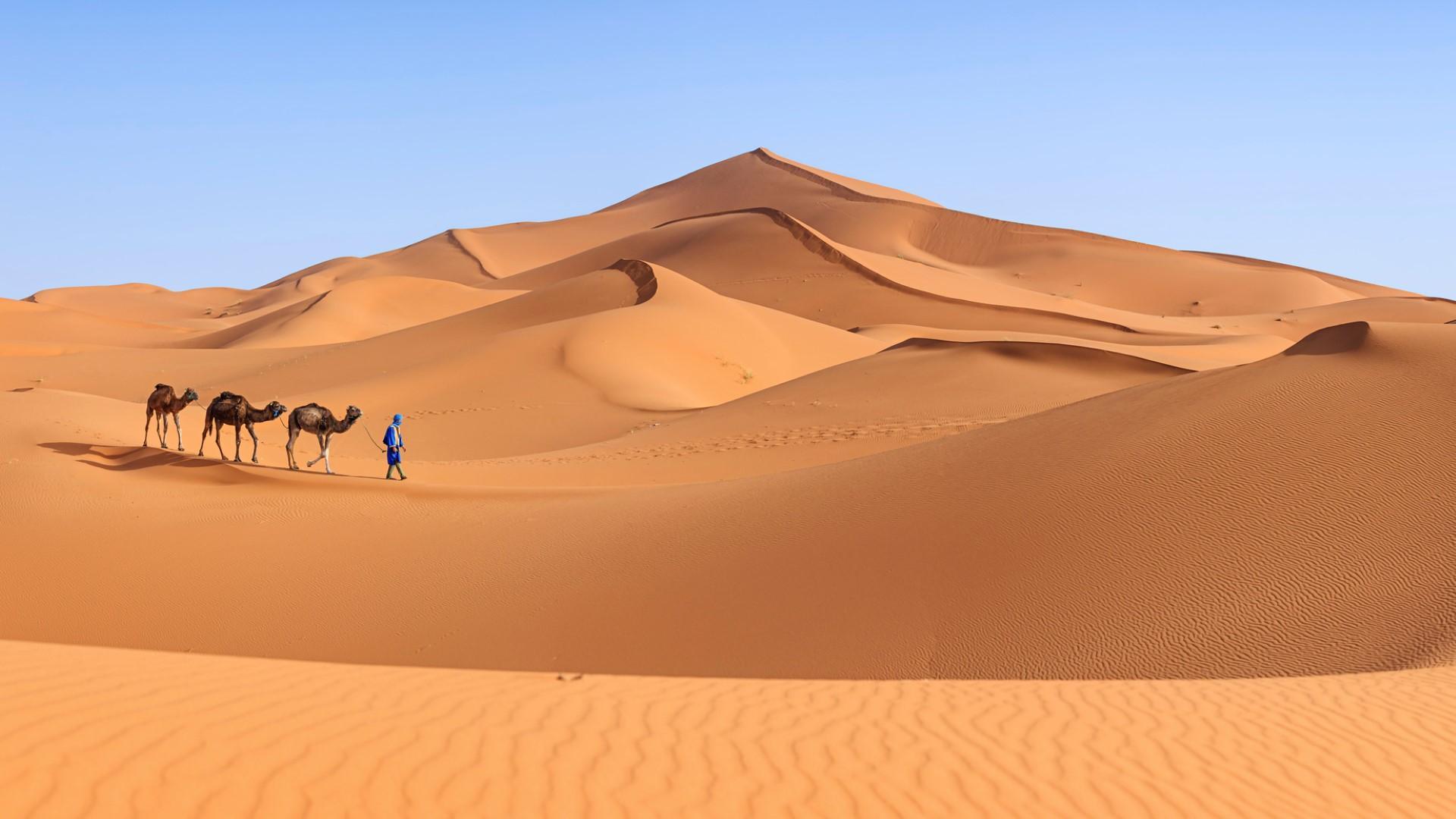 Deserti lo spettacolo di dune e sabbia tgcom24 for I piu fighi del mondo