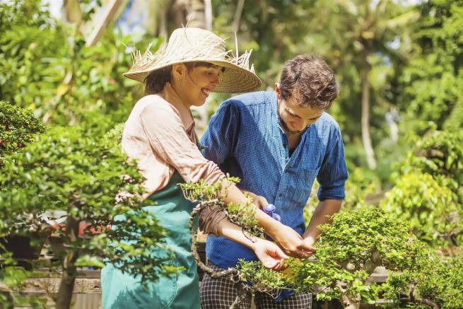 Cinque lezioni sulla coppia da imparare dal giardinaggio
