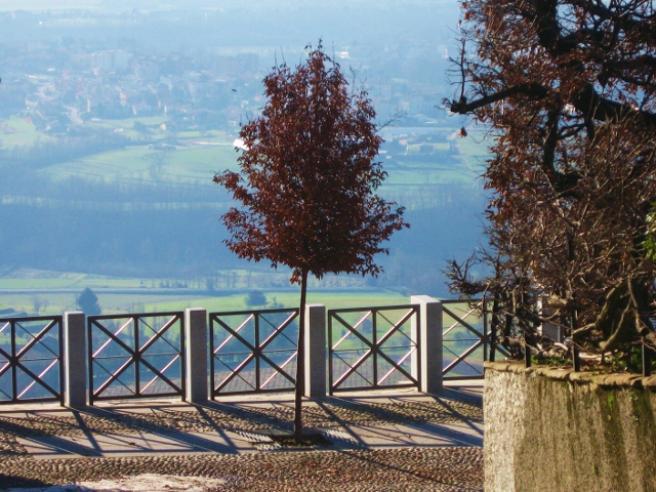 Beautiful Agriturismo Montevecchia Le Terrazze Contemporary ...