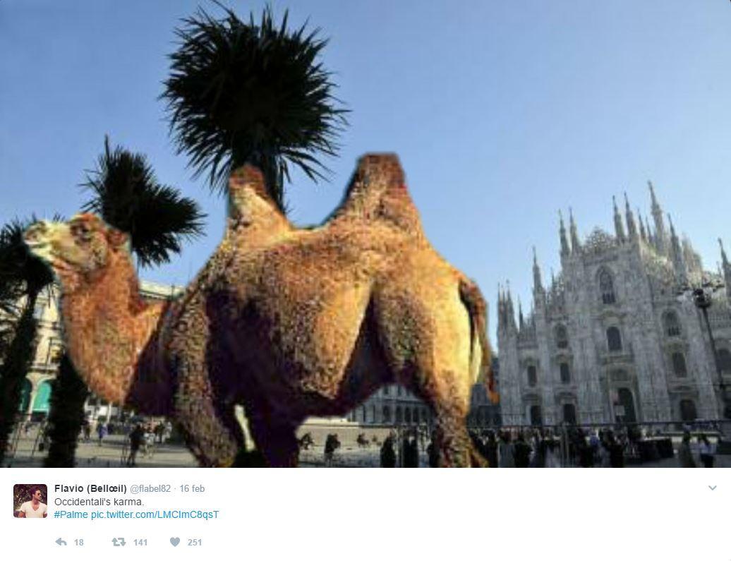Milano, le palme della discordia scatenano l ironia social