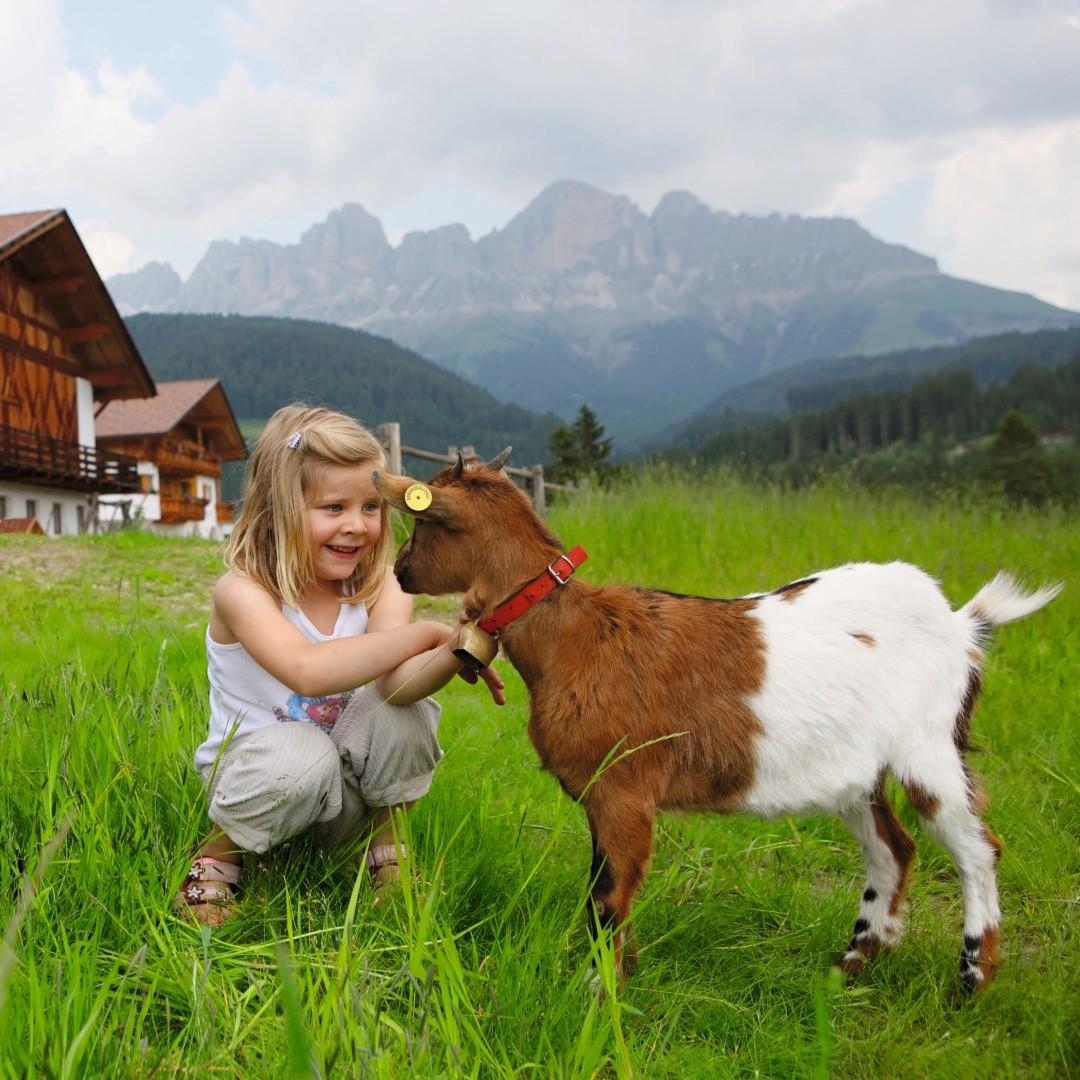 Masi in Alto Adige: le Alpi amano i bambini
