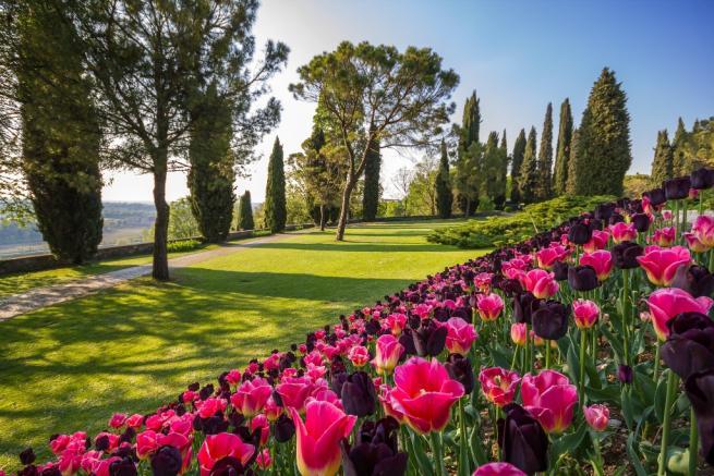La primavera sboccia nei parchi pi belli d italia tgcom24 - Giardino fiorito torino ...