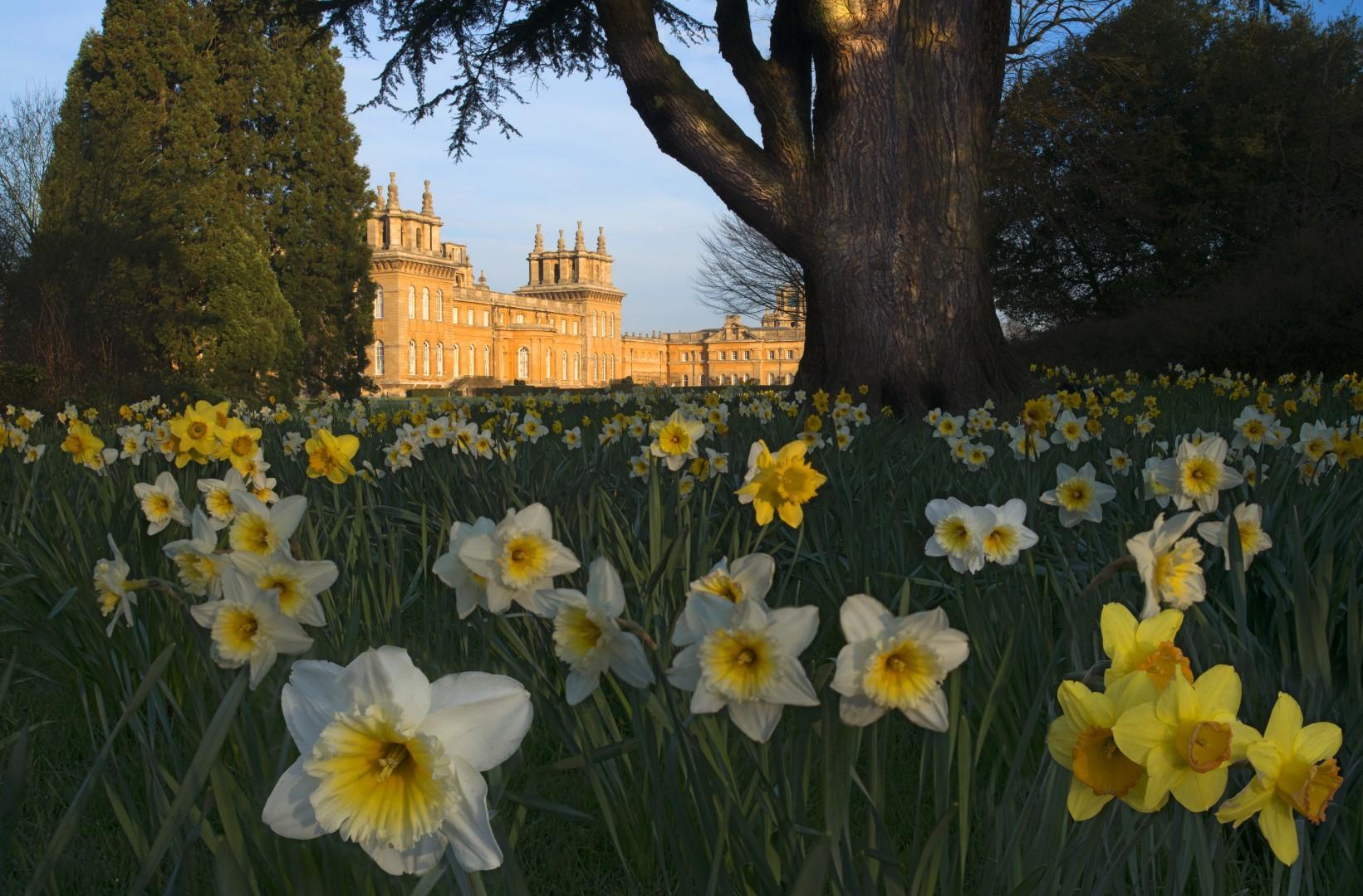 L amore inglese per i fiori: 10 giardini da vedere