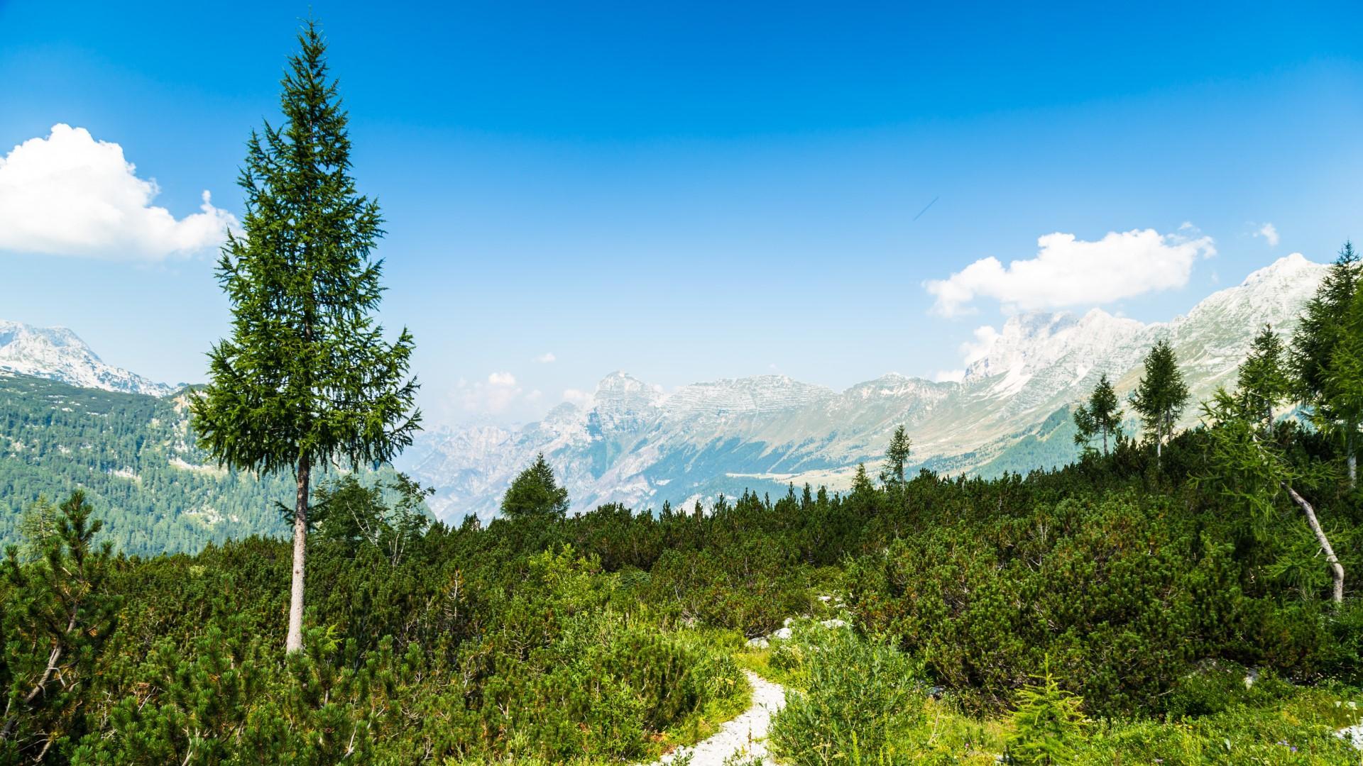 Turismo sostenibile: le migliori destinazioni