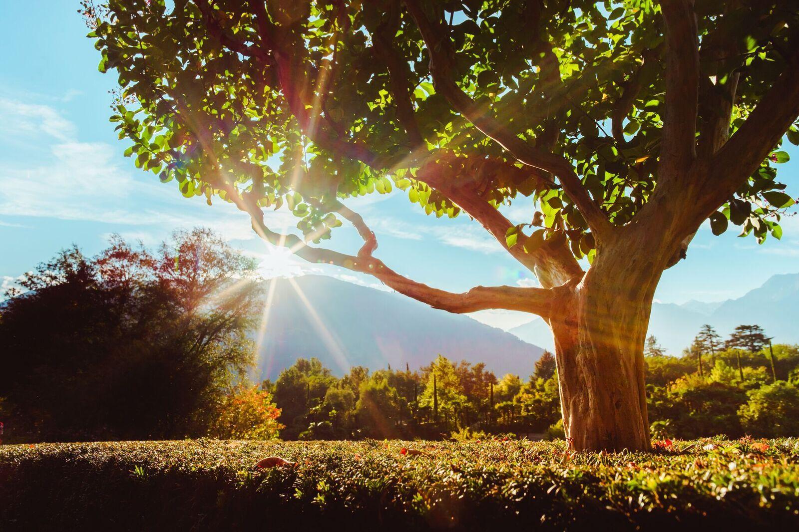 Foliage ed eventi nei parchi più belli