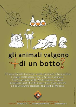 """Botti di Capodanno, """"per gli animali è una guerra: così li uccidete"""""""