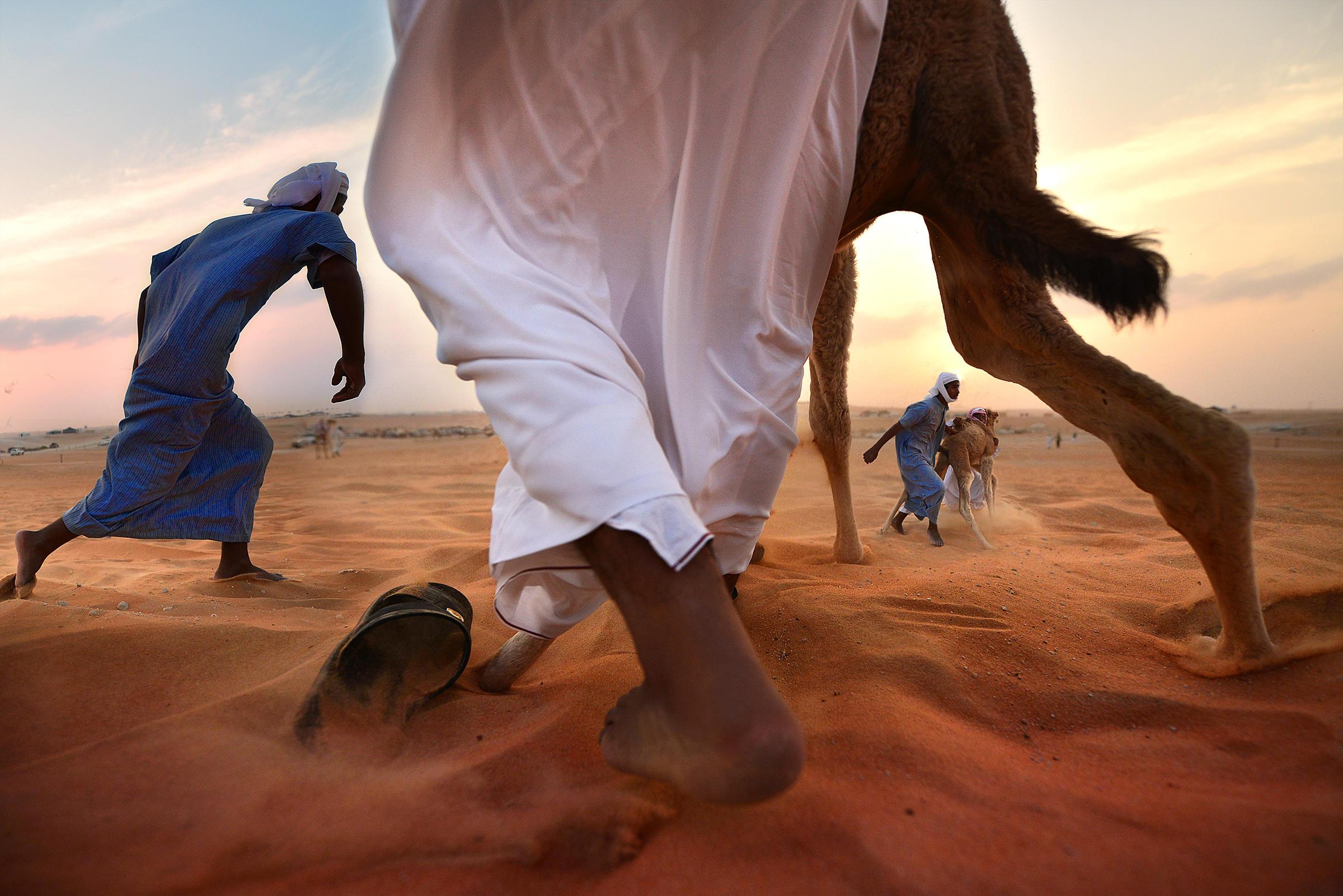 Sony World Photography Awards, premiate le foto più belle del mondo