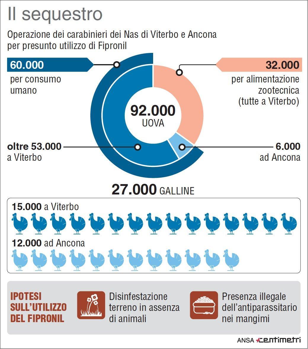 Uova contaminate, sequestri a Viterbo e Ancona