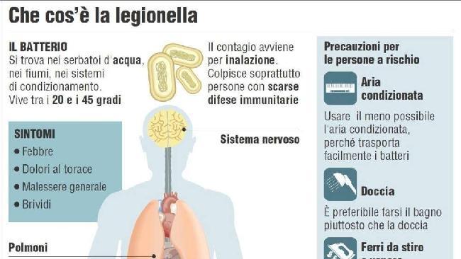 Legionella: ecco come si contrae