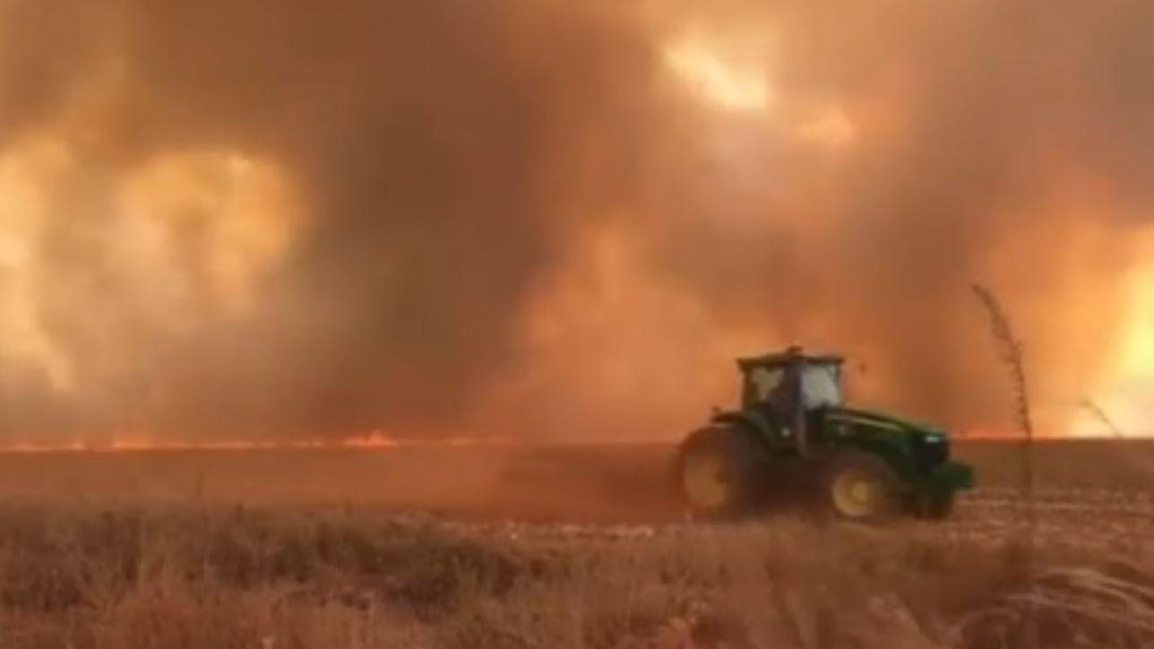 Brasile, la foresta amazzonica registra il record d'incendi quest'anno