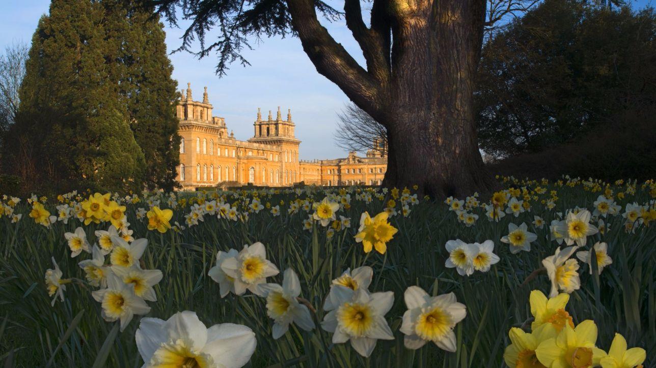 Come Fare Un Giardino Inglese dieci magnifici giardini all'inglese - tgcom24