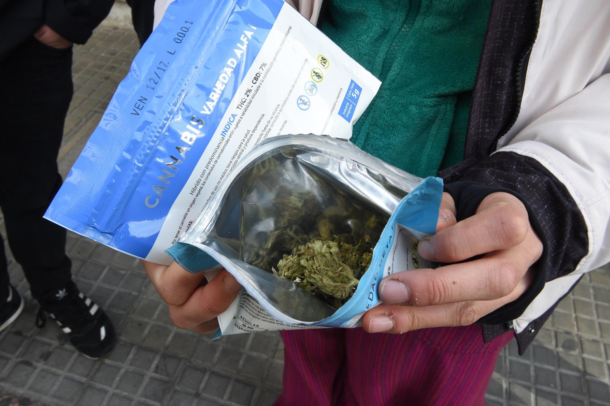 Uruguay, iniziata la vendita di cannabis in farmacia