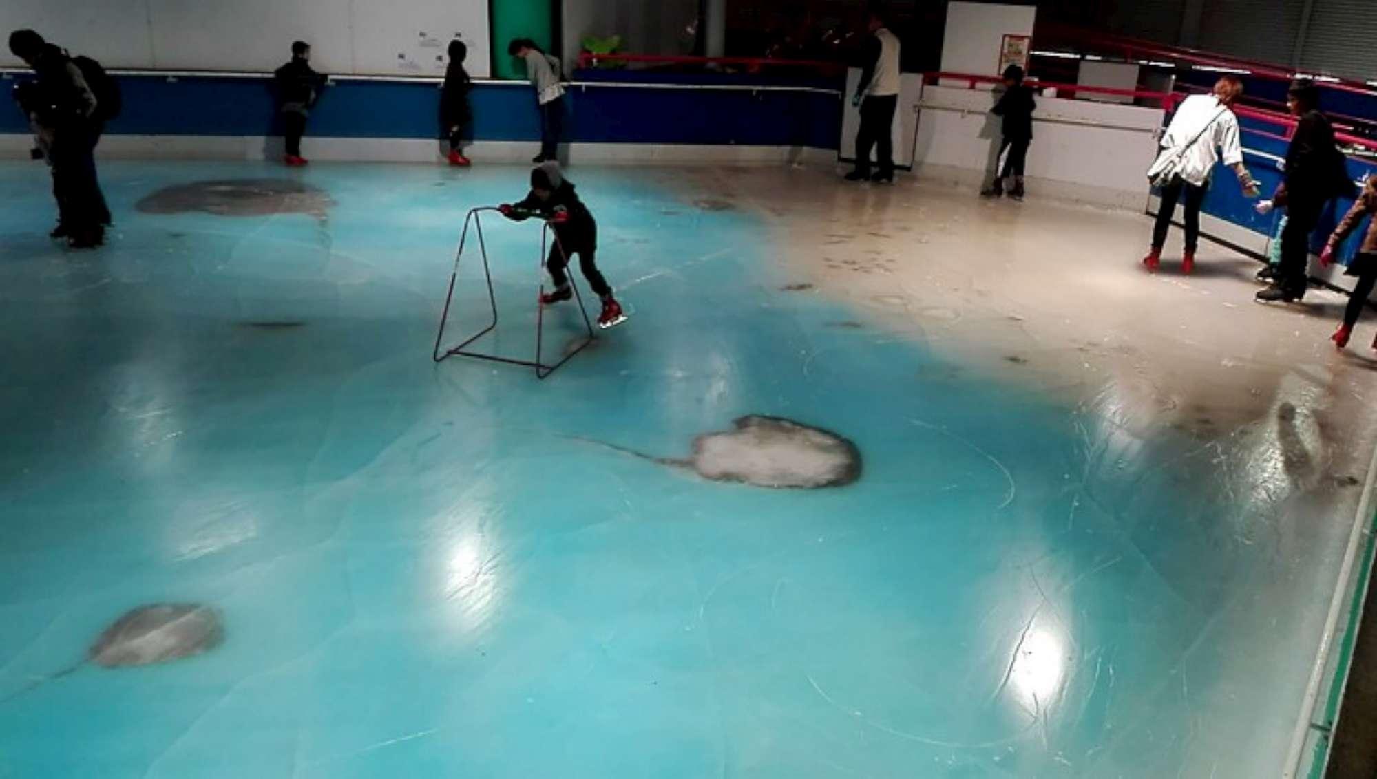 In Giappone pista di pattinaggio con 5mila pesci congelati