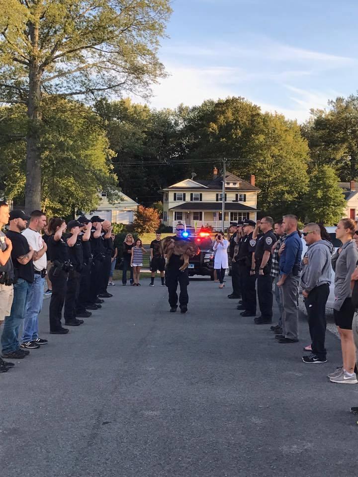 Usa, cane poliziotto muore per un cancro al fegato: cerimonia d addio per omaggiarlo