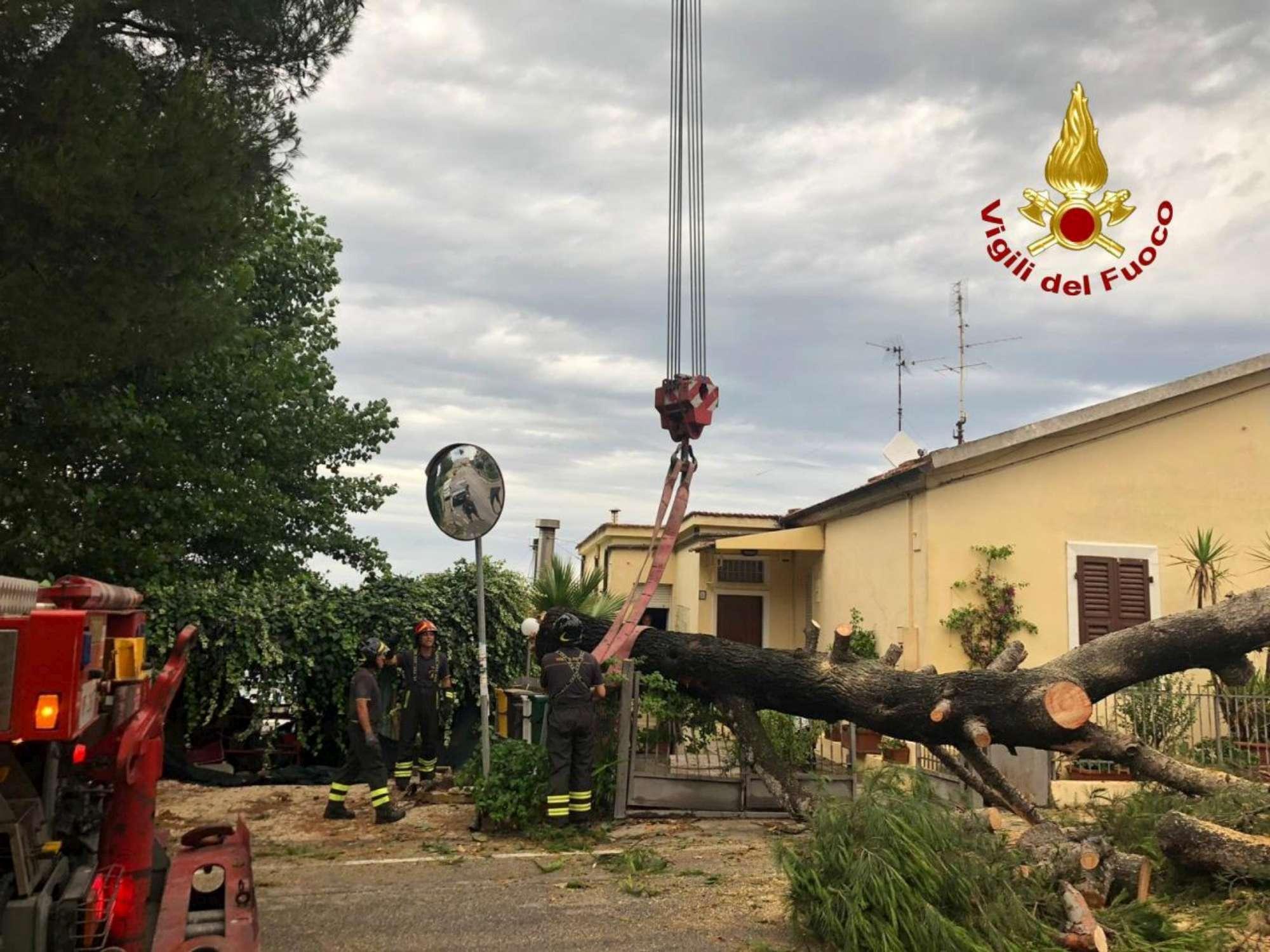 Maltempo, violento temporale si abbatte sull Anconetano: vento e grandine
