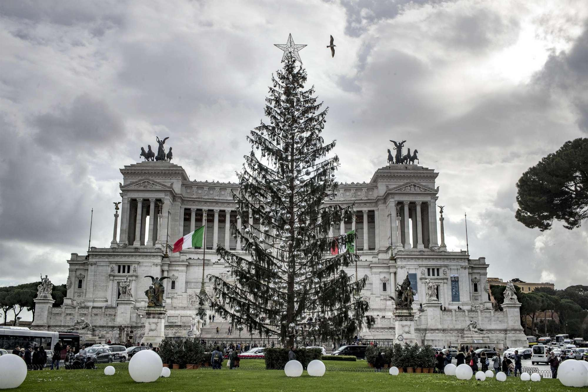 Roma,  Spelacchio è morto : il Comune apre un inchiesta sulla fine dell albero di Natale