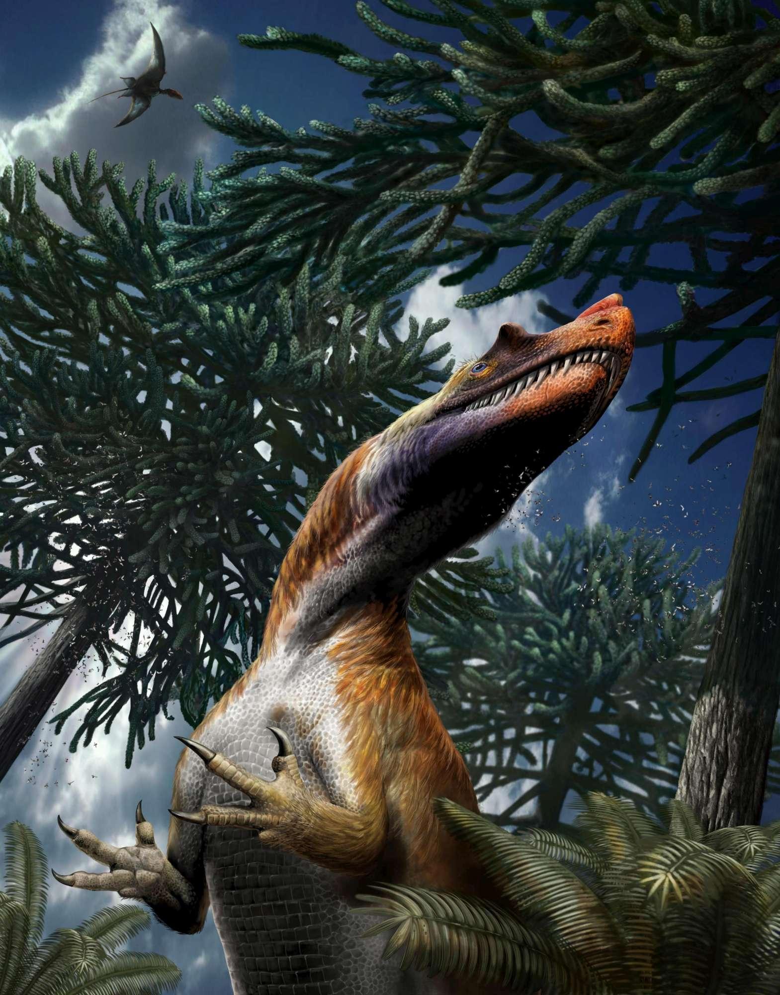 Saltriovenator, è italiano il più antico dei grandi dinosauri predatori