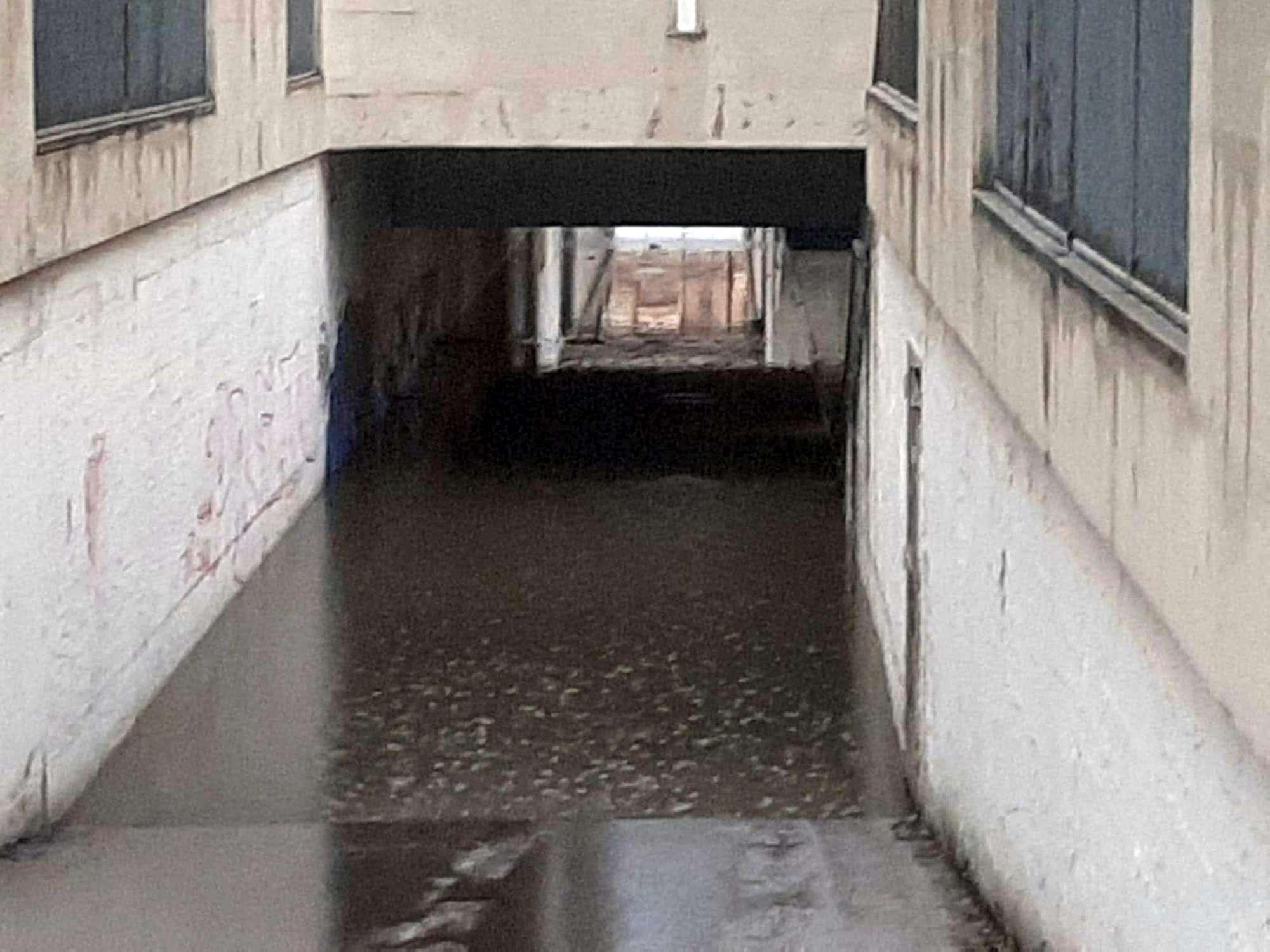 Nubifragio ad Arezzo, morto un anziano