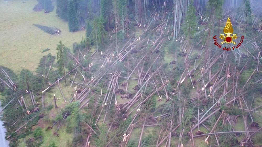 Fiumi in piena e alberi caduti, il Nordest devastato dal maltempo
