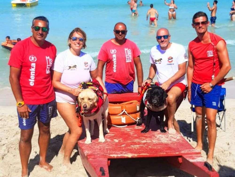 Ferragosto di super lavoro per i cani bagnini, 6 salvataggi sulle spiagge