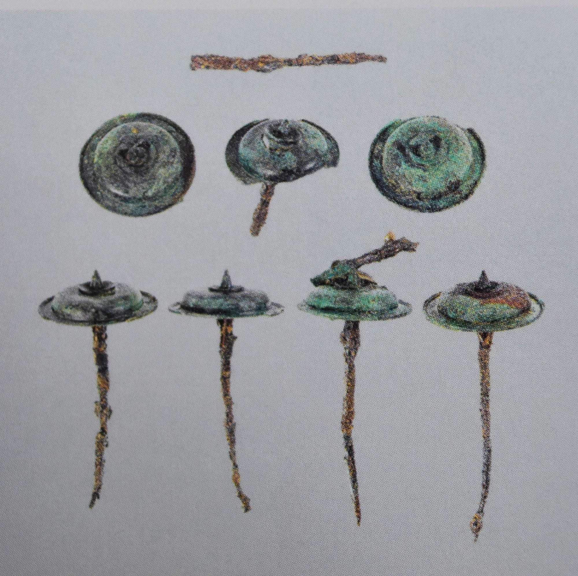 Furto agli scavi di Pompei, rubata una borchia di bronzo del VI secolo a.C.