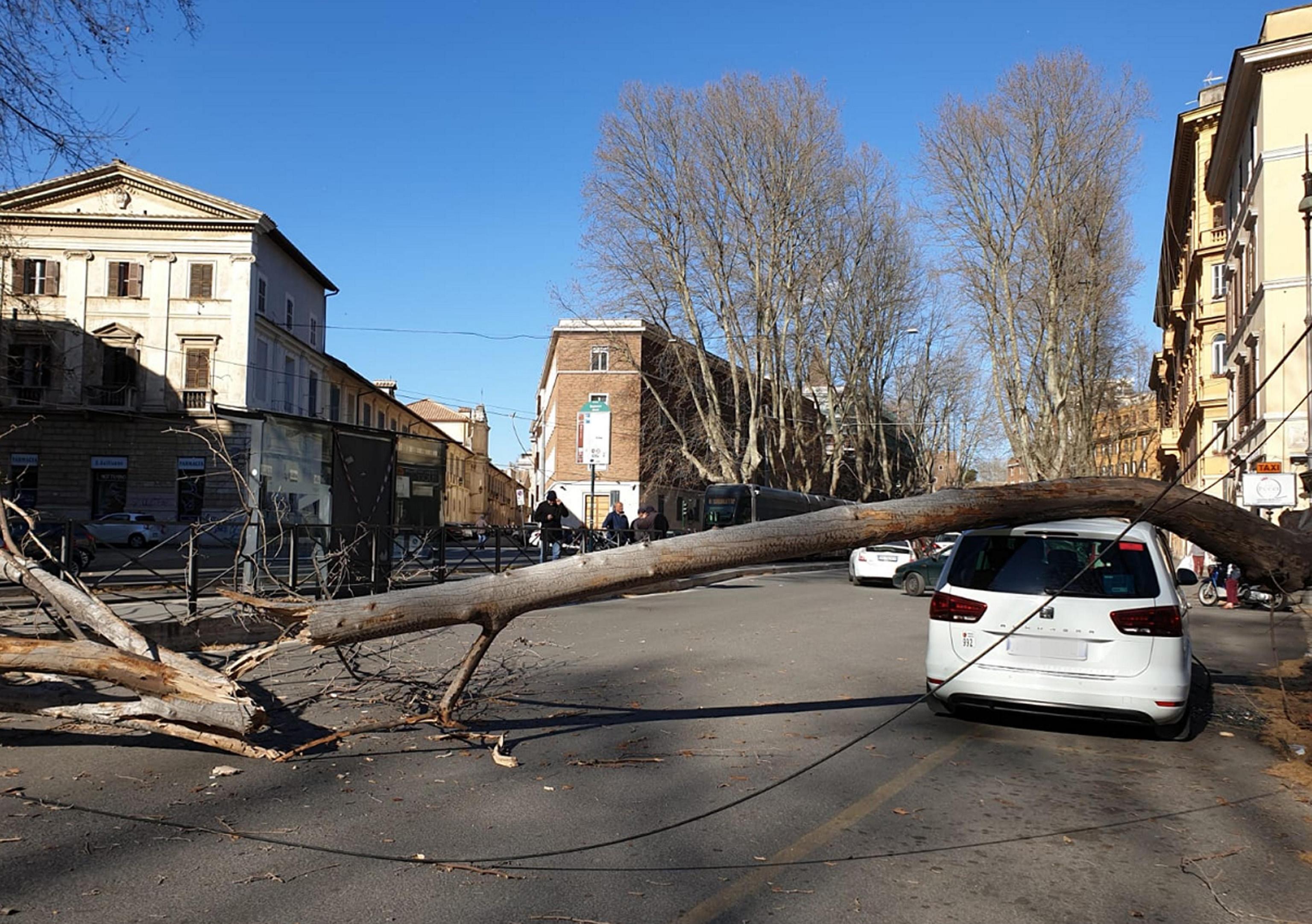 Neve e vento forte, il Centrosud nella morsa del maltempo: crolli e disagi