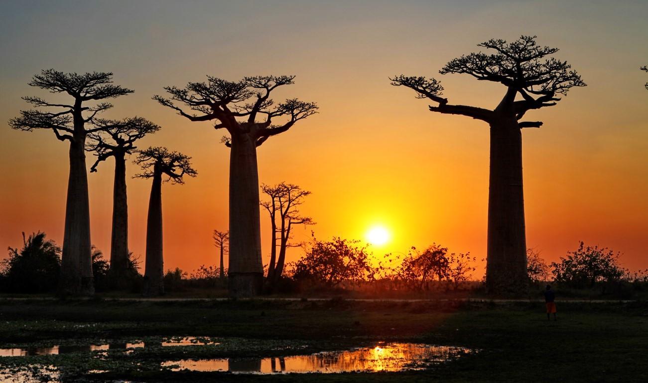 Donnavventura in Madagascar