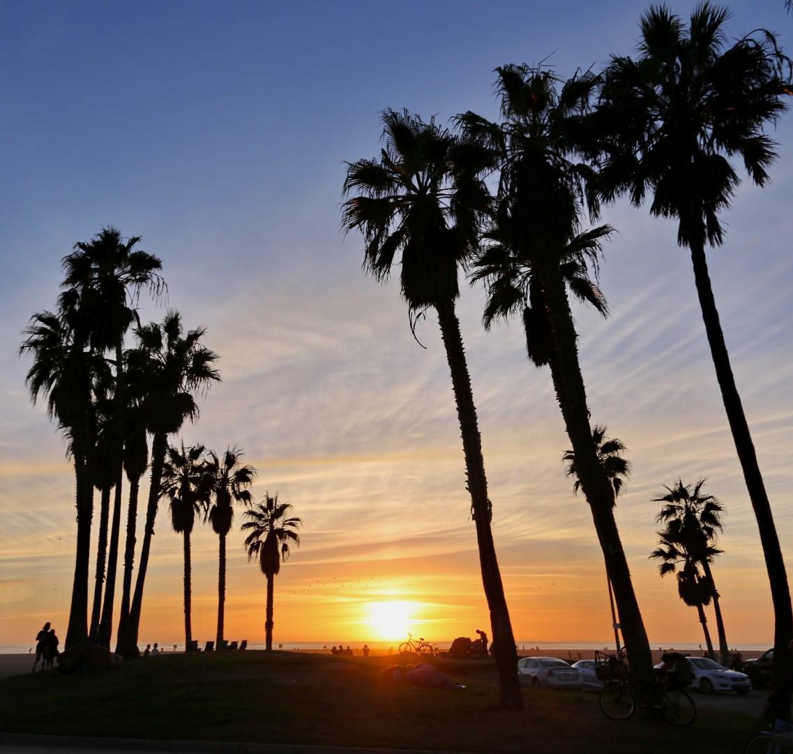 California: a Venice Beach con Donnavventura