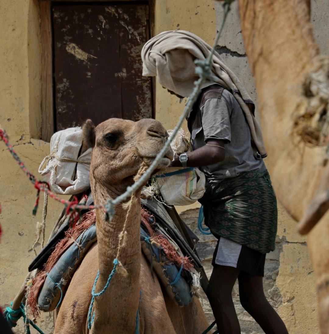 Donnavventura: dalla depressione della Dancalia a Zanzibar