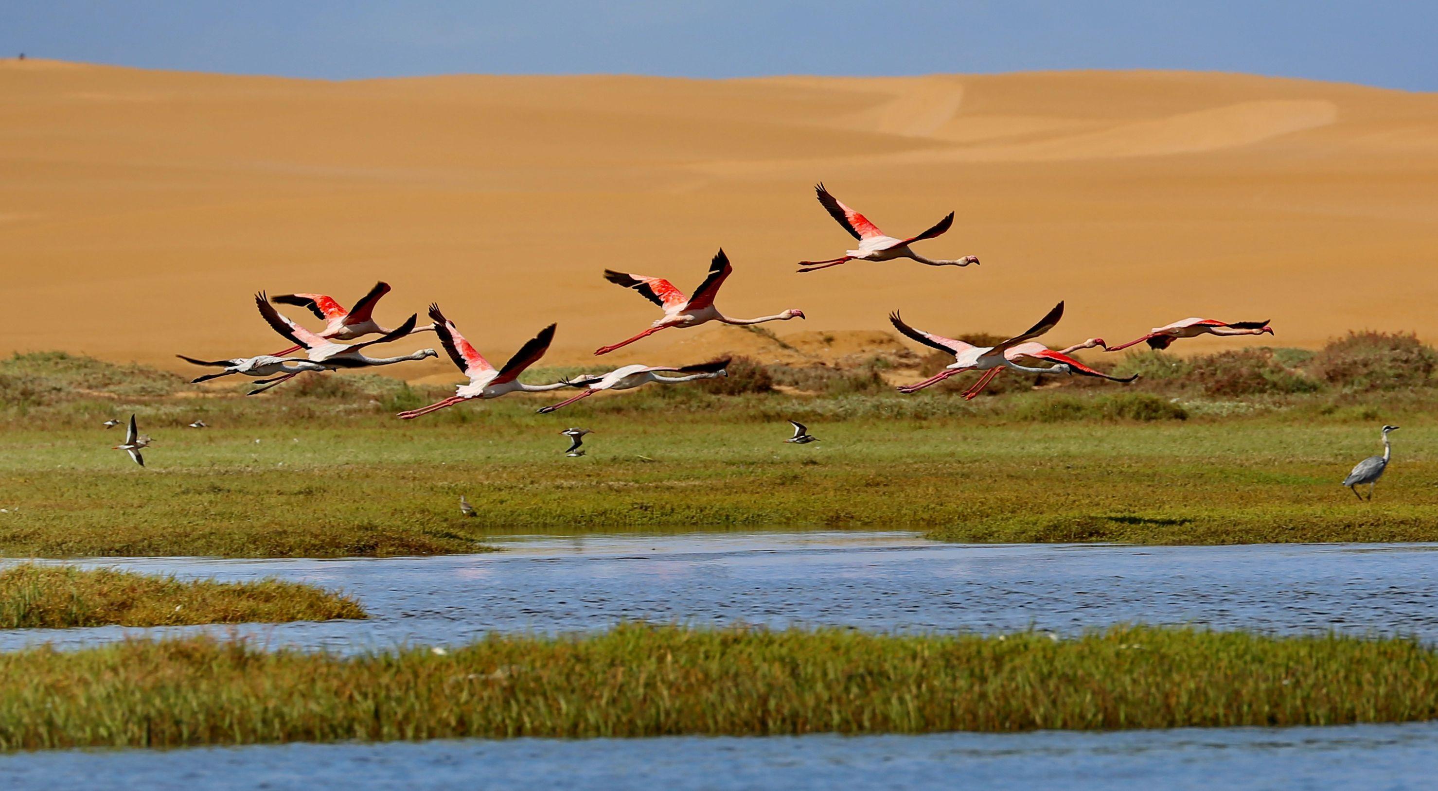 Donnavventura: Marocco, le meraviglie della Laguna di Naila