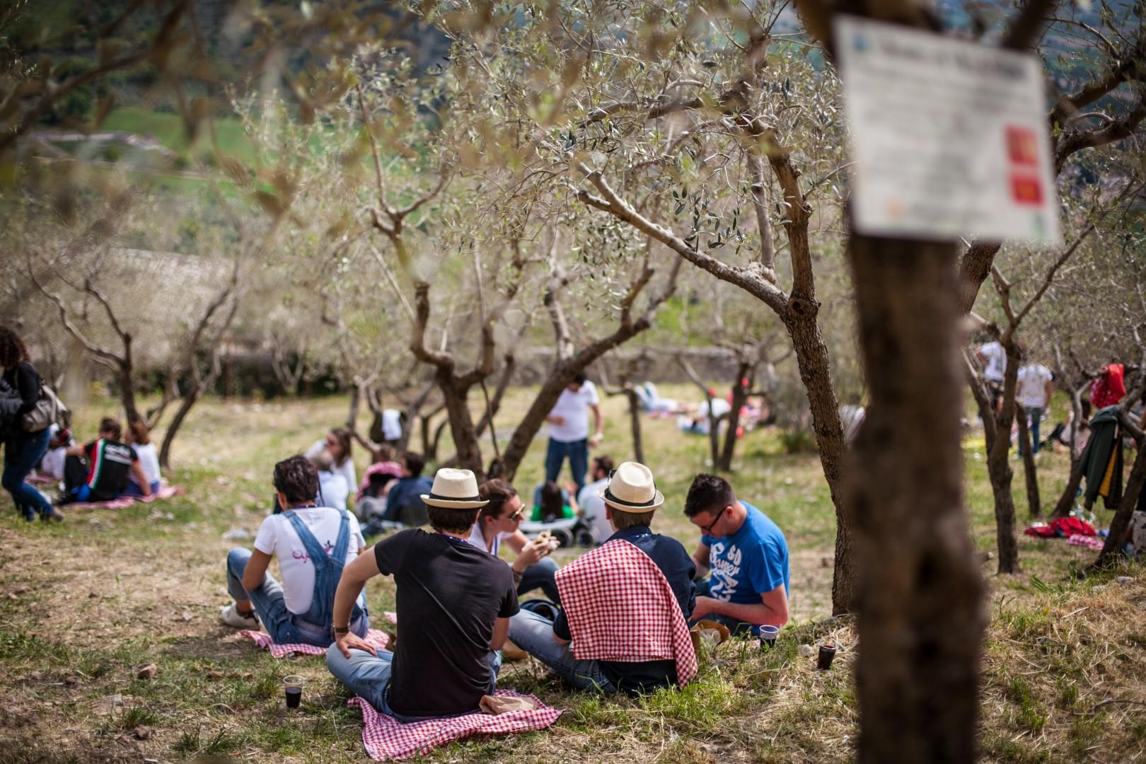 Umbria: a Trevi musica e picnic tra gli ulivi