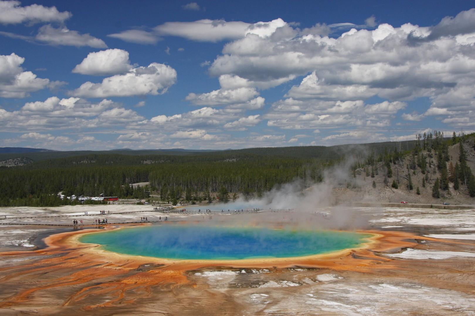 Yellowstone tra lupi, orsi e geyser: un ritorno alla natura