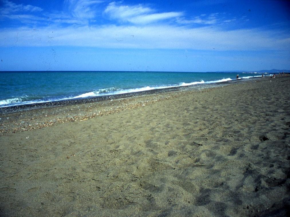 Costa degli Etruschi: spiagge per tutti i gusti