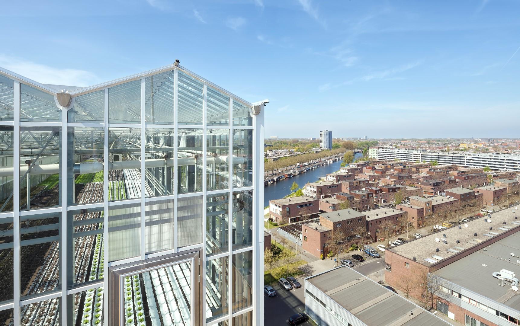 Sui tetti de L Aja un orto urbano da primato