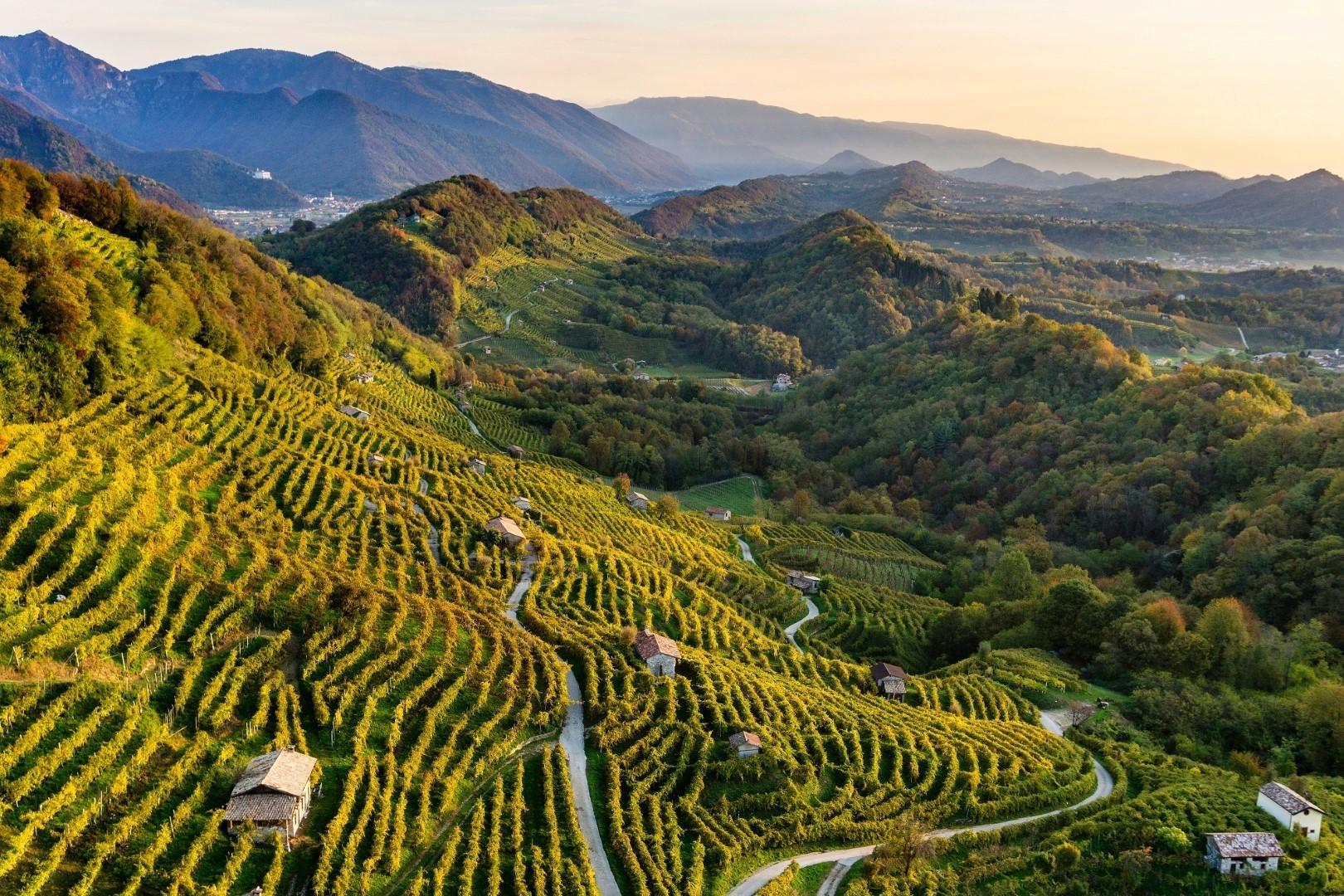 Veneto: le meraviglie della terra del Prosecco