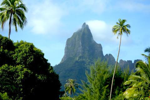 Moorea, la perla dell arcipelago di Tahiti