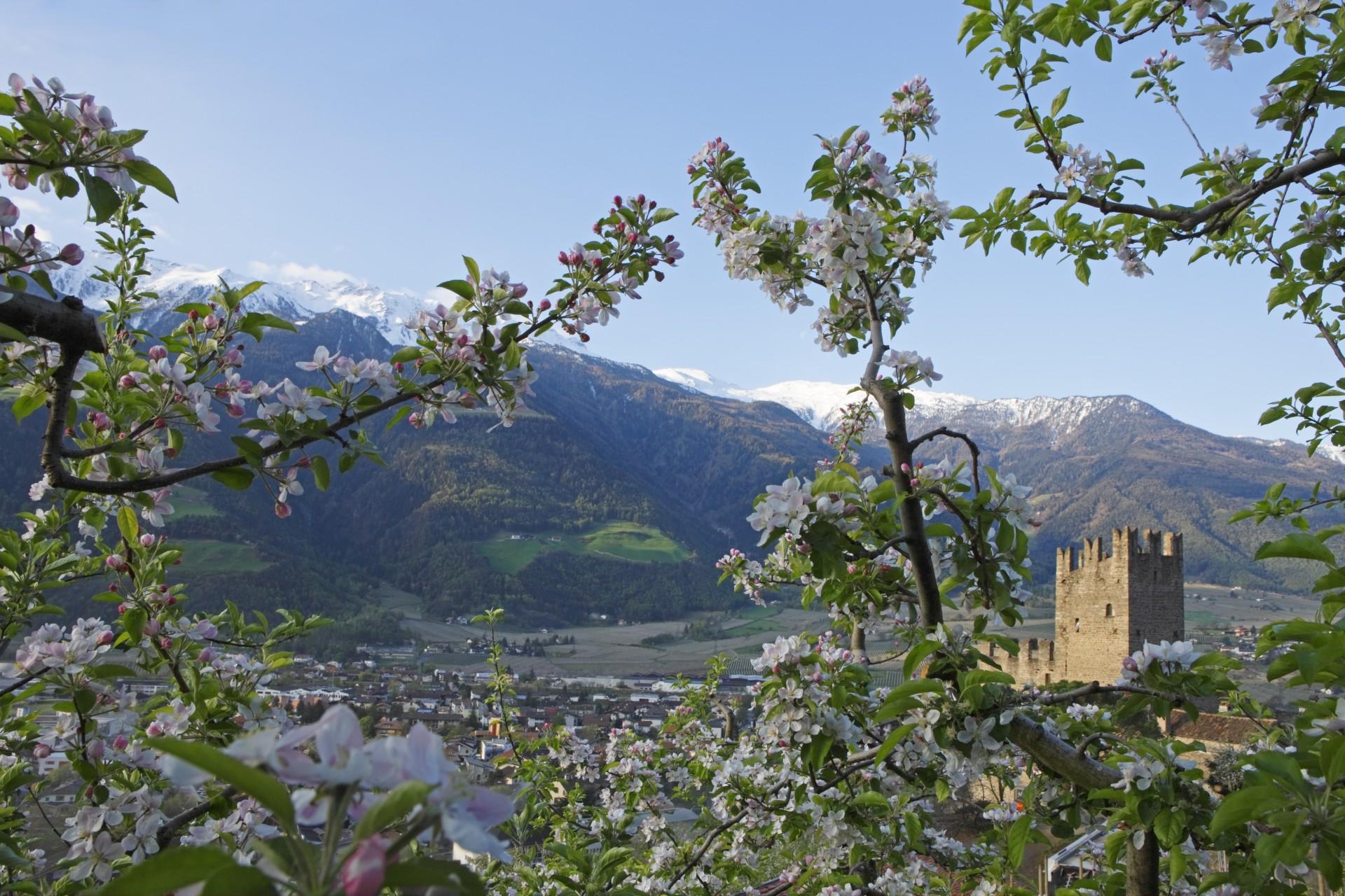 Alto Adige, una primavera di benessere a km zero
